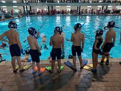 Underwater Championship 2020 in JHB