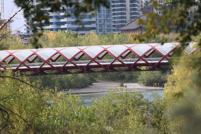 A very nice but hot walk along the Bow river in Calgary