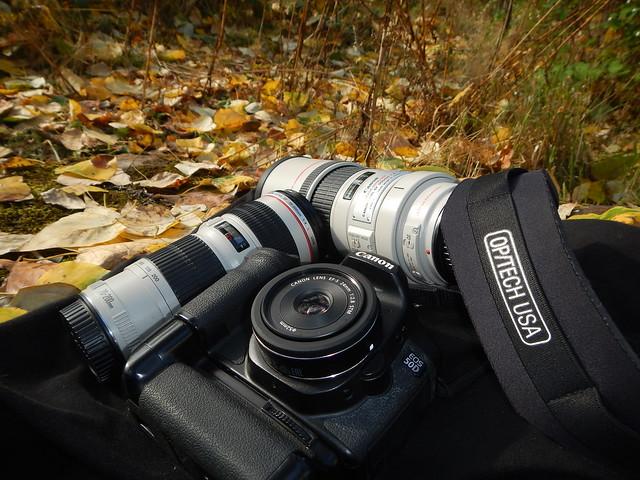 Canon from a Nikon