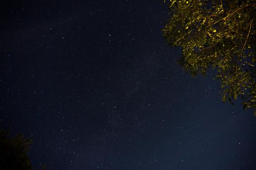 Clear skies full of stars