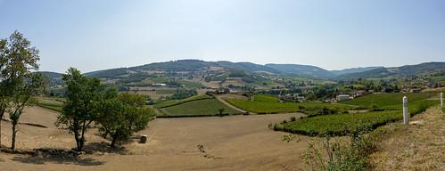 Beatifull Burgundy scenery