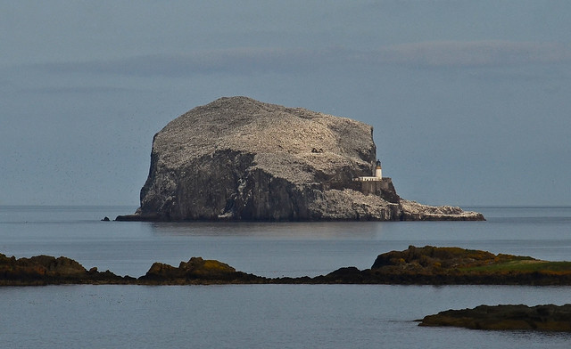 Bass Rock, Firth of Forth, Scotland (Explored)