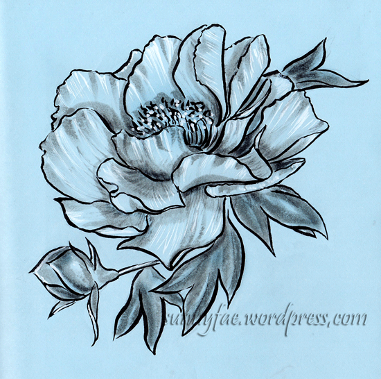 peony ink drawing