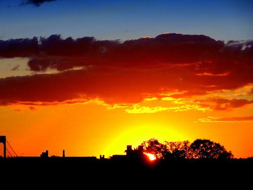 newyork brooklyn image sky skyline trees dmitriyfomenko clouds sunset
