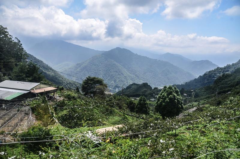 細道邦山1305峰登山口俯瞰大安溪谷