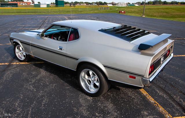 Sunday afternoon random Mustang shot...