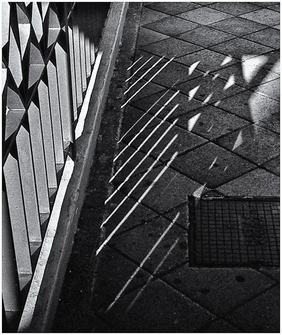 Luz y Sombra (Light & Shadow)