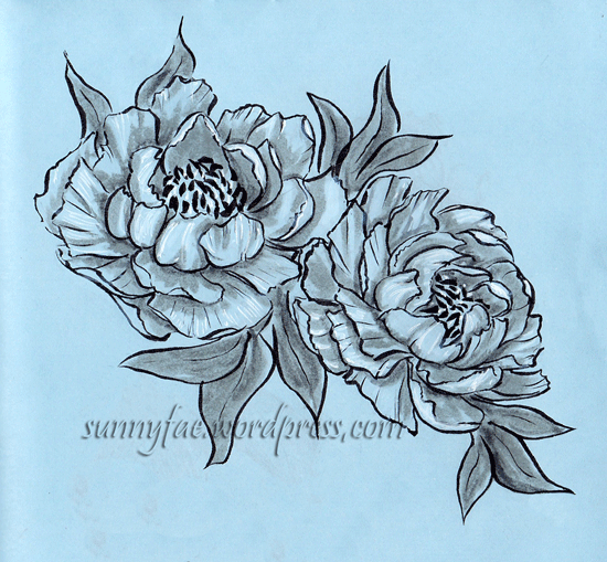 an ink drawing of two peonies