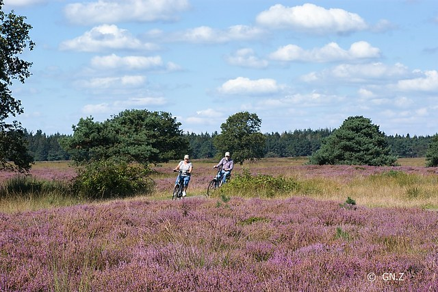 Cycling in beautiful Drenthe