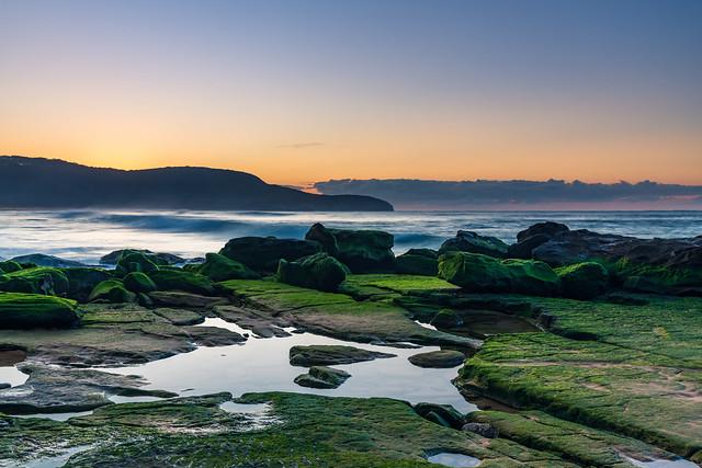 Green velvet mossy rocks at the seaside