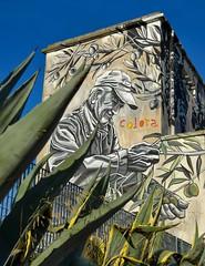 L'agricoltura raccontata dai murales