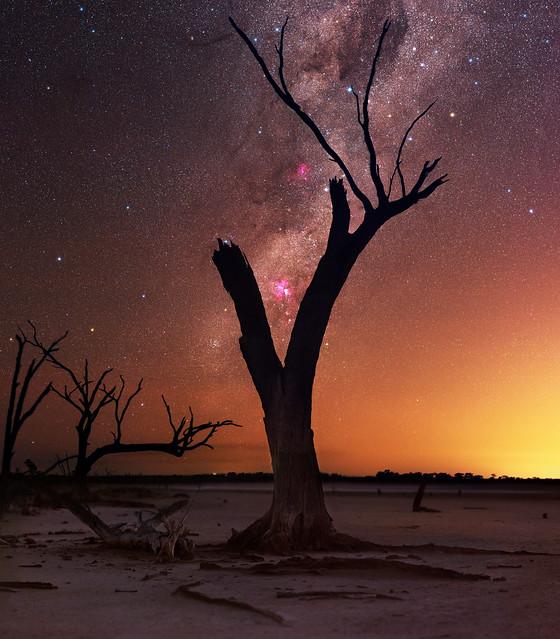 Carina rising at Lake Dowerin, Western Australia
