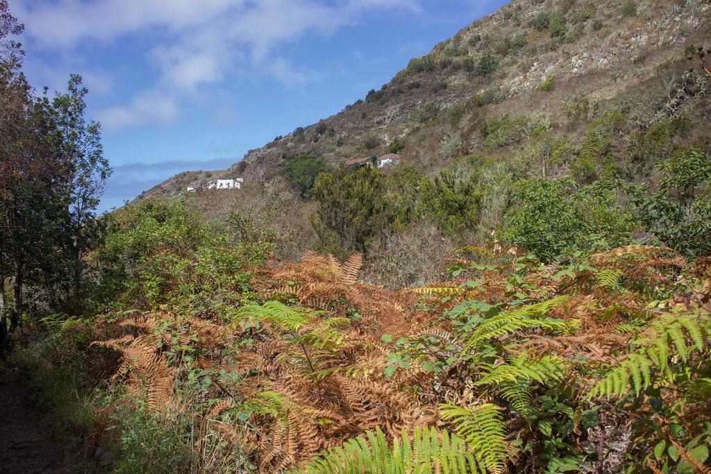 Casas de Tierra del Trigo en Tenerife vistas desde el sendero de Cuevas Negras