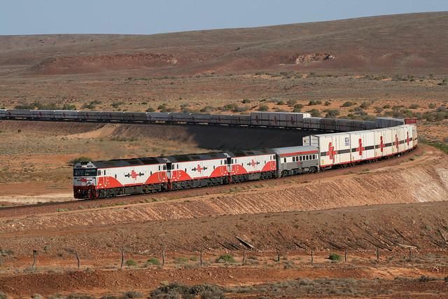The long white train