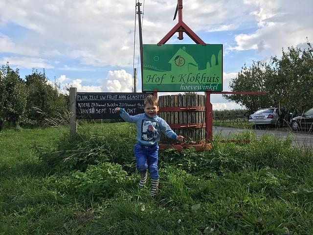 De zelfplukboerderij – een leuke uitstap met een kleuter! 5