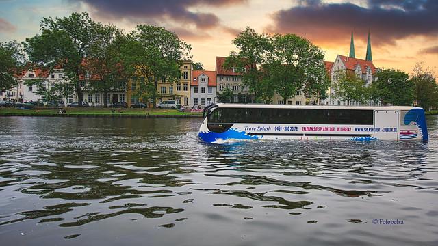 In Lübeck fahren die Busse in der Trave..