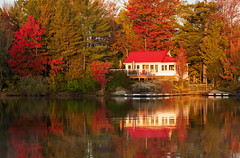 Red Roof & Fall Colours