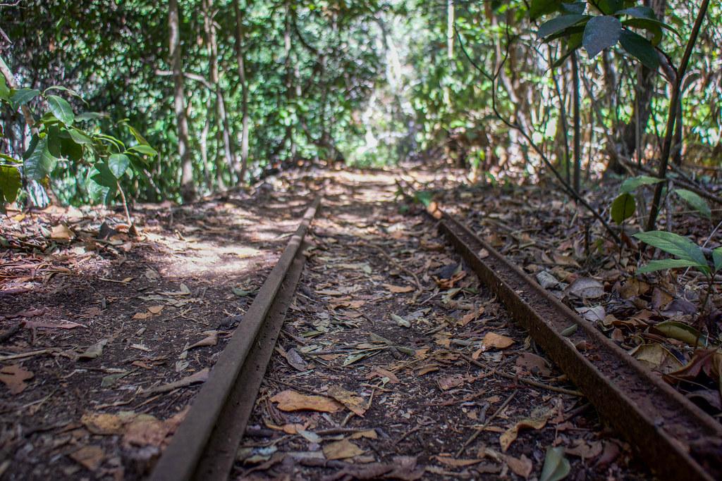 Railes en dirección al tunel del Barranco de los Cochinos