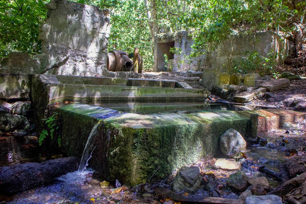 Estanque con agua en el Barranco Piedra Cochinos cerca del Monte del Agua