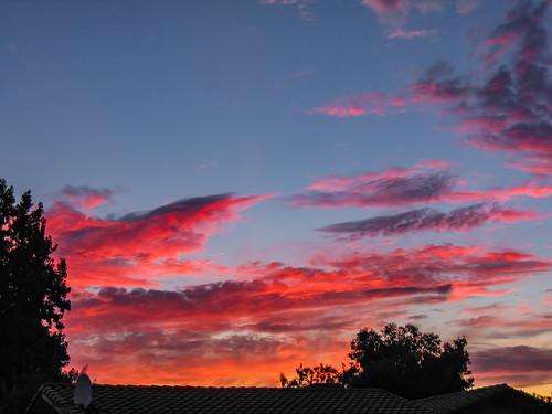 america bakersfield california kerncounty platocourt platoct usa unitedstates cloud jfflickr nature photosbydavid plant postedonflickr sky sunset
