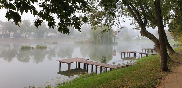 Fogg and pool