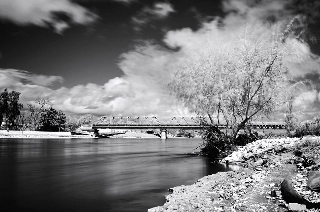 Sorraia River, in movement...