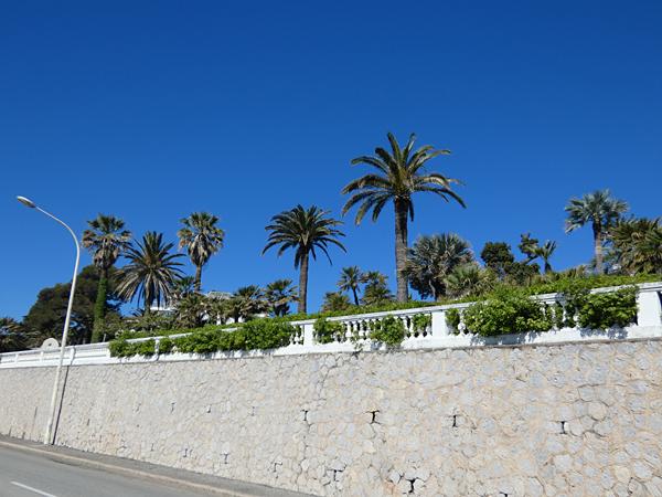palmi   ers