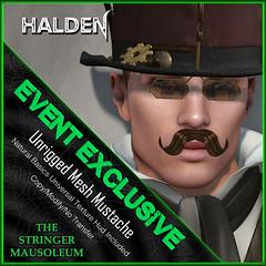 The Stringer Mausoleum - ER - Halden Mustache