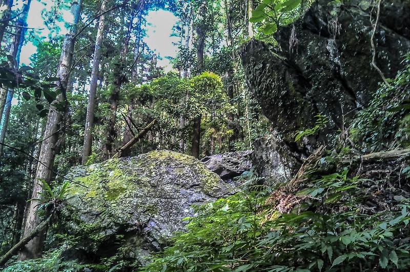 南坑山西北峰路徑巨石峭壁區 (1)