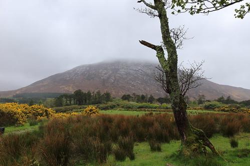 victorianwalledgarden connemara cogalway ireland westireland kylemore mountain landscape westernireland nature