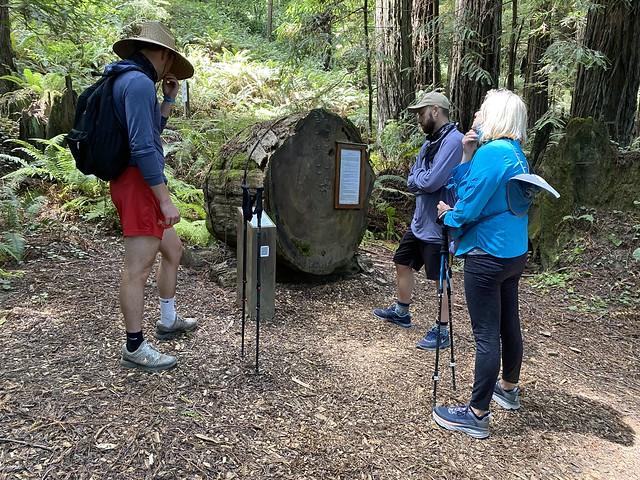 Logging Techniques
