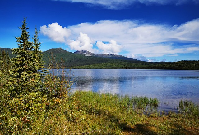 Canol Road Northern Section.   Yukon Territory, Canada.