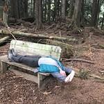 Bere Point Park trail