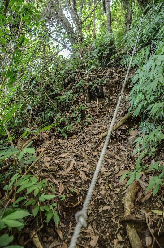 南坑山登山路徑 (3)