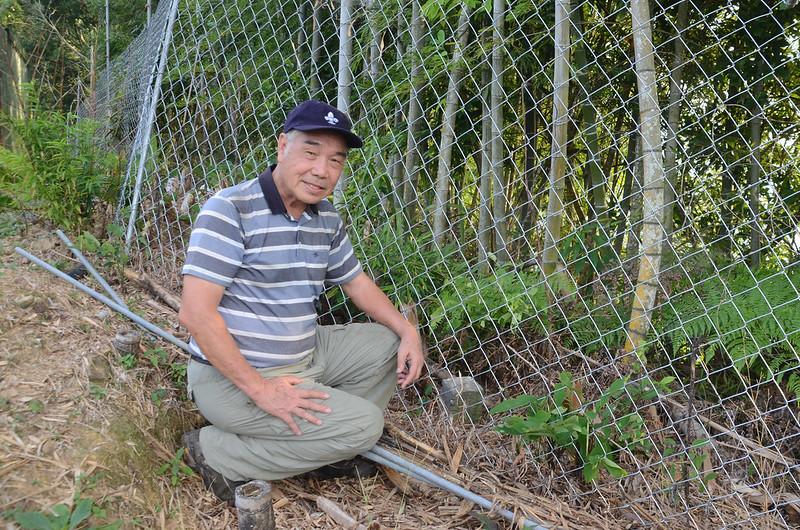 大安山山頂台灣省政府圖根補點