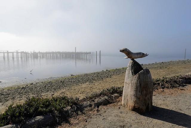Thinking About Bodega Bay