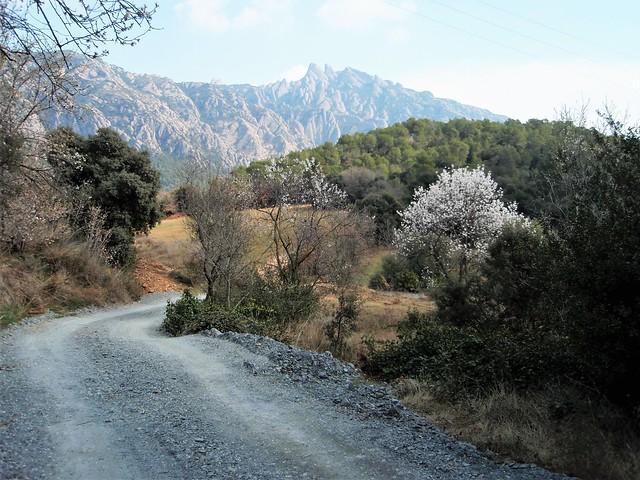 Paseo a los pies de Monserrat - El Bruc