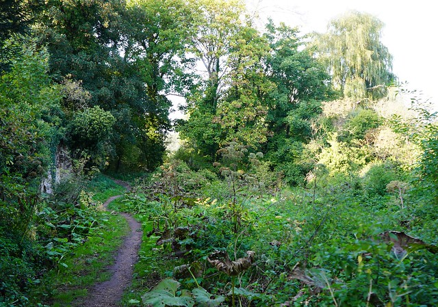 21.09.20 Holy Well site Stevington Beds. UK