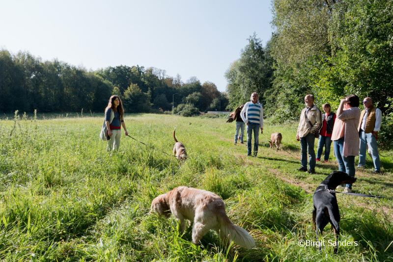 WEB_B-WUSST Hundewiese_20.09.20_©Foto Birgit Sanders__209