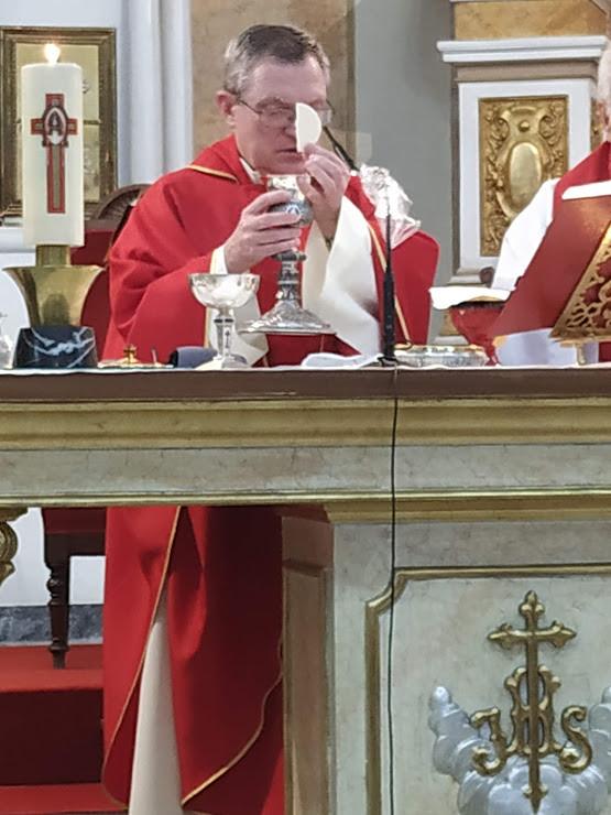(2020-07-05) Eucaristía, último día novenario - José Vicente Romero Ripoll (17)