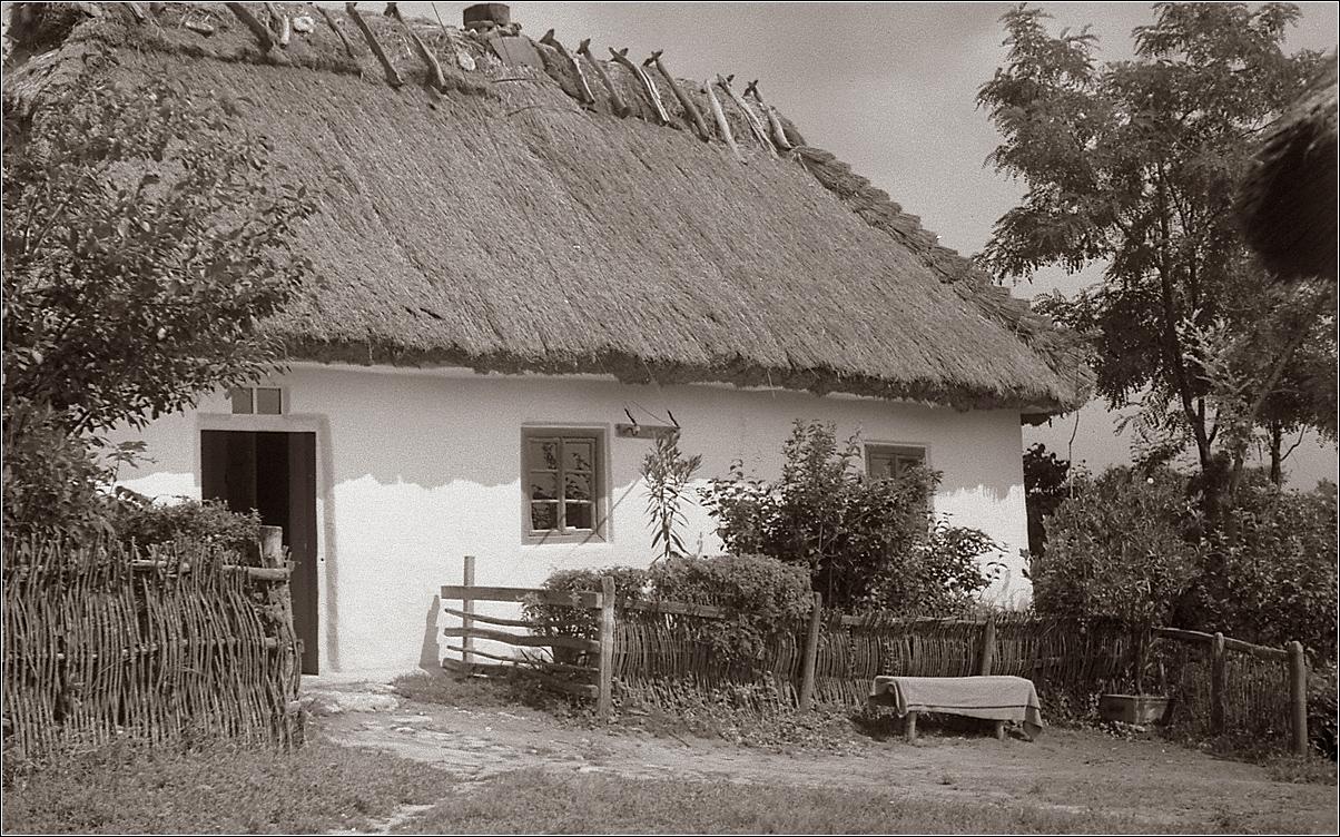 15. 1964. Село. Хата
