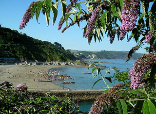 Looking towards East Looe town beach and the Looe Gig Regatta. Photographer Rosemary Spooner, Torquay | by South West Coast Path Team