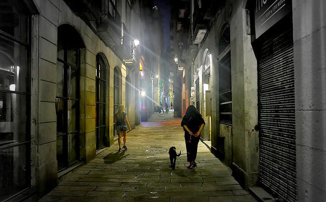 Night walks - Paseos nocturnos