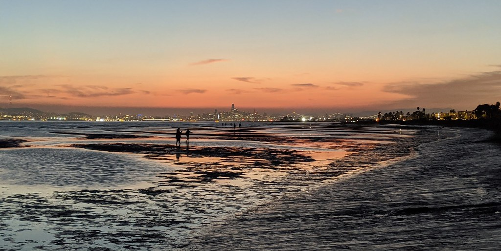 The Emerald City of Sf at low tide