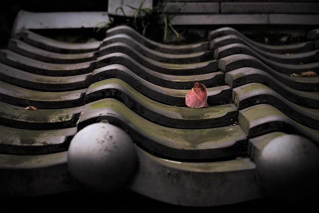 Japanese tiled roof