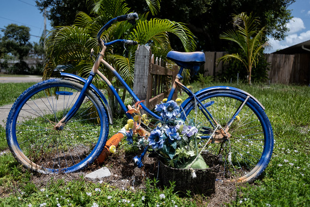 Blue Bicycle, 9th Avenue Drive W.