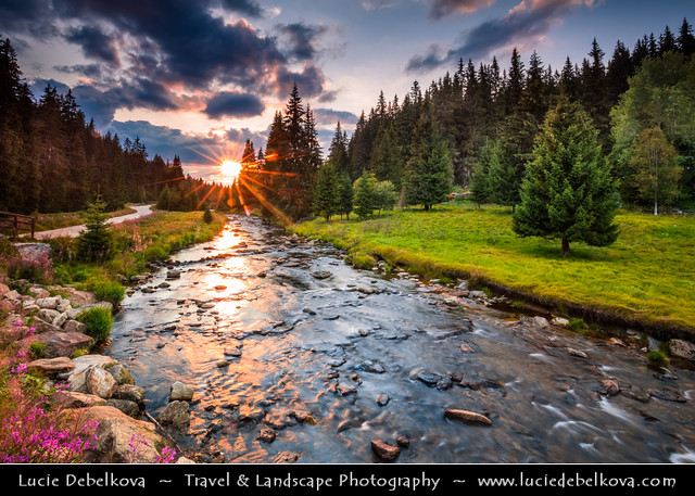 Czech Republic - Šumava National Park - Roklan stream at Sunset