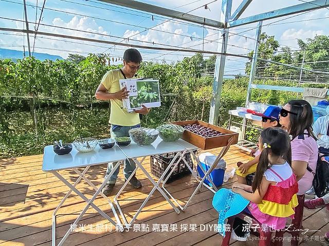 桃米生態村 親子景點 嘉寶果 採果 diy體驗