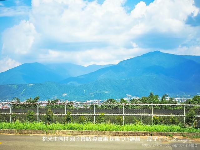 56 桃米生態村 南投埔里 採果 嘉寶果 diy體驗 親子景點