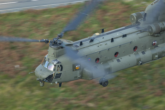 Chinook close up.